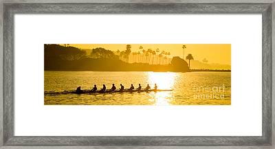 Newport Beach Rowing Crew Panorama Photo Framed Print by Paul Velgos