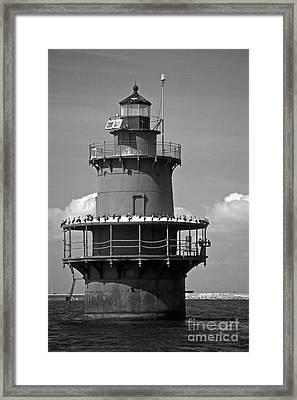 Newport News Middle Ground Framed Print by Skip Willits