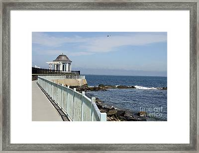 Newport's Cliff Walk  Framed Print by Christiane Schulze Art And Photography