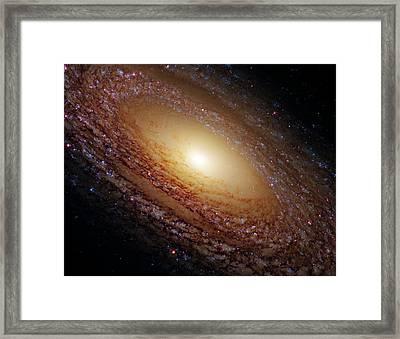 Ngc 2841 Framed Print by Ricky Barnard