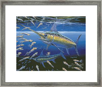 Night Broadbill Off0068 Framed Print by Carey Chen