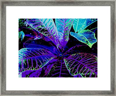 Night Falls On The Croton Framed Print by Ann Johndro-Collins