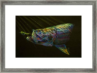 Night Fly Framed Print by Yusniel Santos