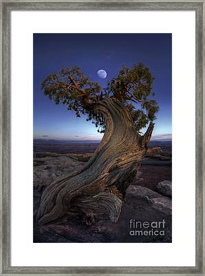 Night Guardian Of The Valley Framed Print by Marco Crupi