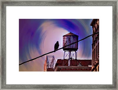 Night Life Framed Print by Bill Cannon
