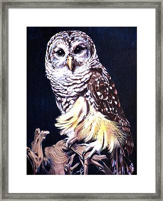 Night Owl Framed Print by Vivien Rhyan