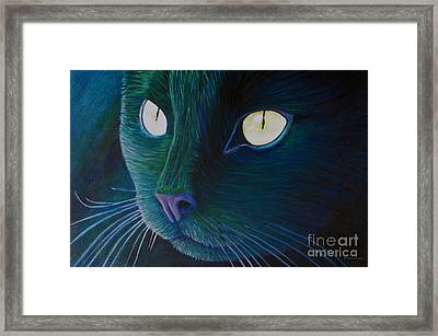 Night Vision Framed Print by Brian  Commerford