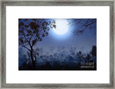 Night Watcher Framed Print by Bedros Awak