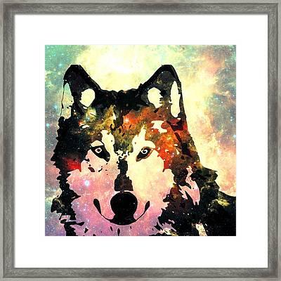 Night Wolf Framed Print by Anastasiya Malakhova
