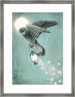 Nighthawk Framed Print by Eric Fan