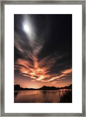 Nightime Saguaro Skies Framed Print by Anthony Citro