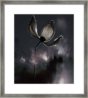Nights I Wrote  Framed Print by JC Photography and Art
