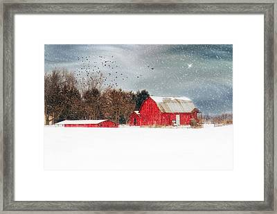Night's Snow Dust Framed Print by Mary Timman