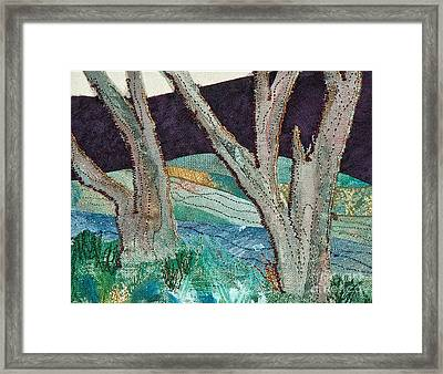 Nisqually II Framed Print by Susan Macomson