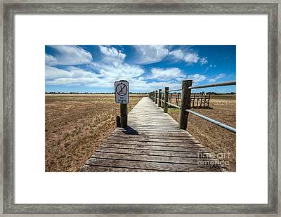 No Diving Framed Print by Ray Warren