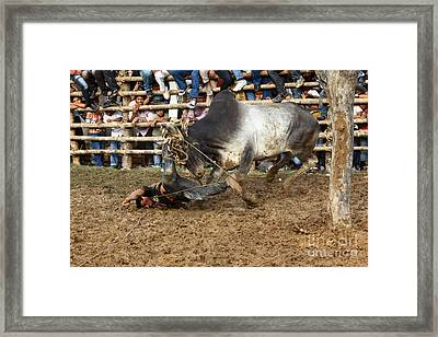 No Pain No Gain Framed Print by James Brunker