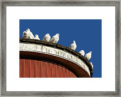 No Place Like Home Framed Print by Nikolyn McDonald