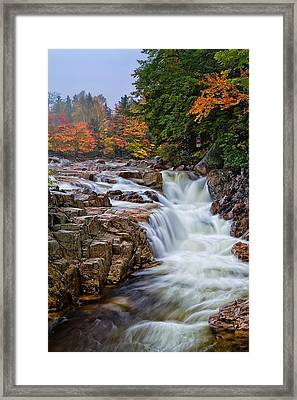 No Swimming Rocky Gorge Albany Nh Framed Print by Jeff Sinon
