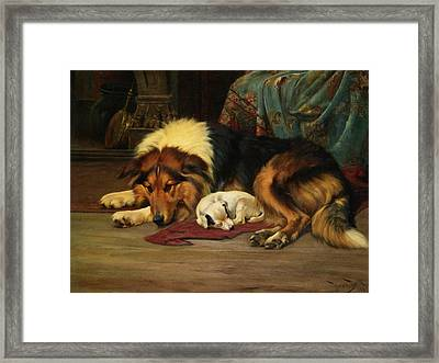 No Walk Today Framed Print by Wright Barker