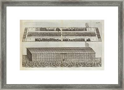 Noah's Ark Framed Print by Middle Temple Library