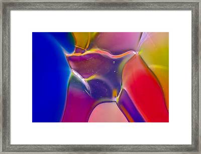 Noble Colors Framed Print by Omaste Witkowski