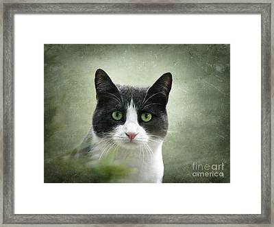 Nobody Knows The Troubles I've Seen Framed Print by Ellen Cotton