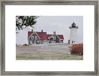 Nobska Lighthouse  Framed Print by Catherine Reusch  Daley