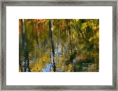 Noland Trail Painting Framed Print by Yvette Radcliffe