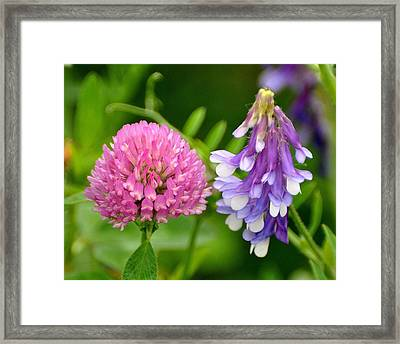 Non Identical Twins Framed Print by Marty Koch