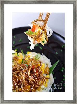 Noodles With Mealworms Framed Print by Emilio Scoti