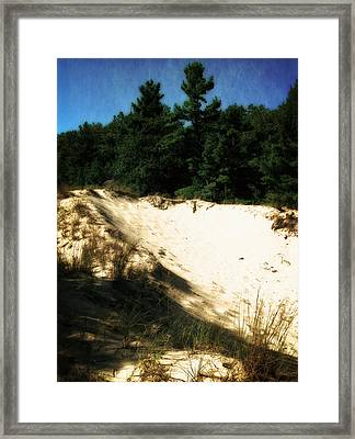 Nordhouse Dunes Wilderness Framed Print by Michelle Calkins
