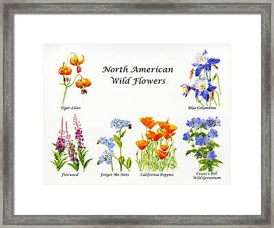 North American Wild Flowers Poster Print Framed Print by Sharon Freeman