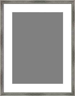 North By Northwest Framed Print by Ayse Deniz