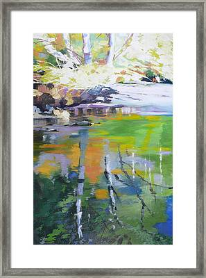 North Fork Silver Creek Framed Print by Melody Cleary