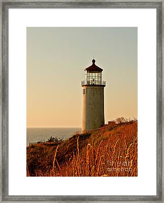 North Head Lighthouse Framed Print by Robert Bales