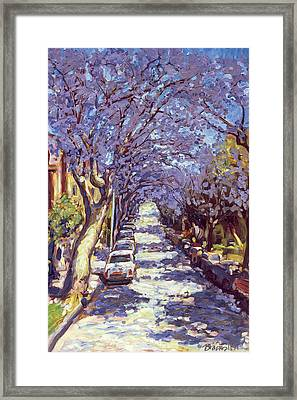 North Sydney Jacaranda Framed Print by Ted Blackall