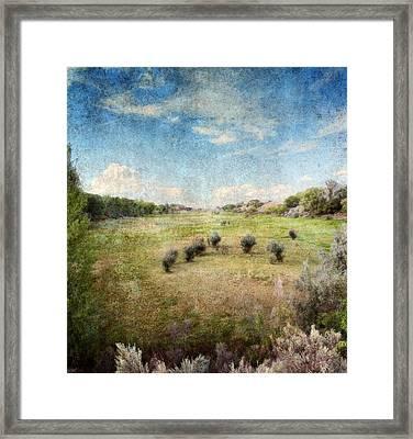 North Valley Framed Print by Brett Pfister