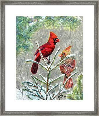 Northern Cardinals Framed Print by Marilyn Smith