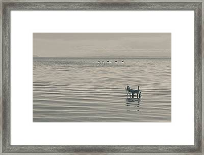 Not All Endings Are Happy Framed Print by Laurie Search