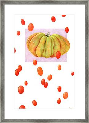 Not From Around Here Framed Print by Paula Pertile
