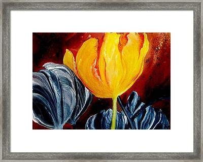 Not Quite Framed Print by Lil Taylor