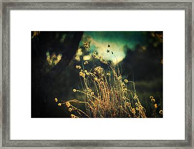 Nouvelle Vague II Framed Print by Taylan Apukovska