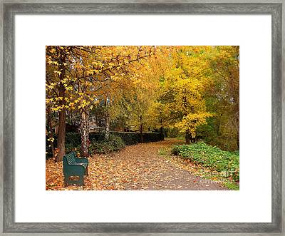 Nov.12-23 Framed Print by Shasta Eone