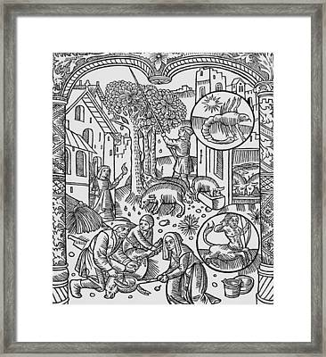 November Scorpio Framed Print by Pierre Le Rouge