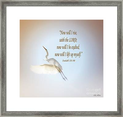 Now Will I Rise  Framed Print by Olahs Photography
