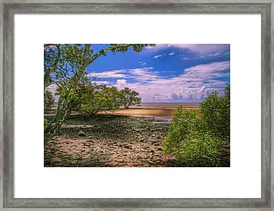 Nudgee Beach Queensland  Australia Framed Print by Donah Beckhouse