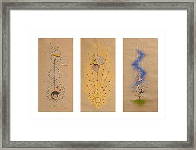 Nursery Collection 5 Framed Print by David Breeding