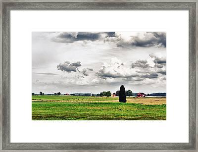 Nurturing The Land Framed Print by Rhonda Negard