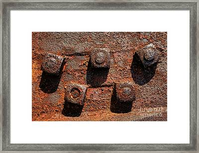 Nuts And Rust Framed Print by Olivier Le Queinec