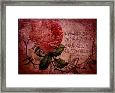 O Rose Thou Art Sick Framed Print by Sarah Vernon